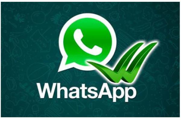 Una paloma azul avisará sobre mensajes leídos en WhatsApp