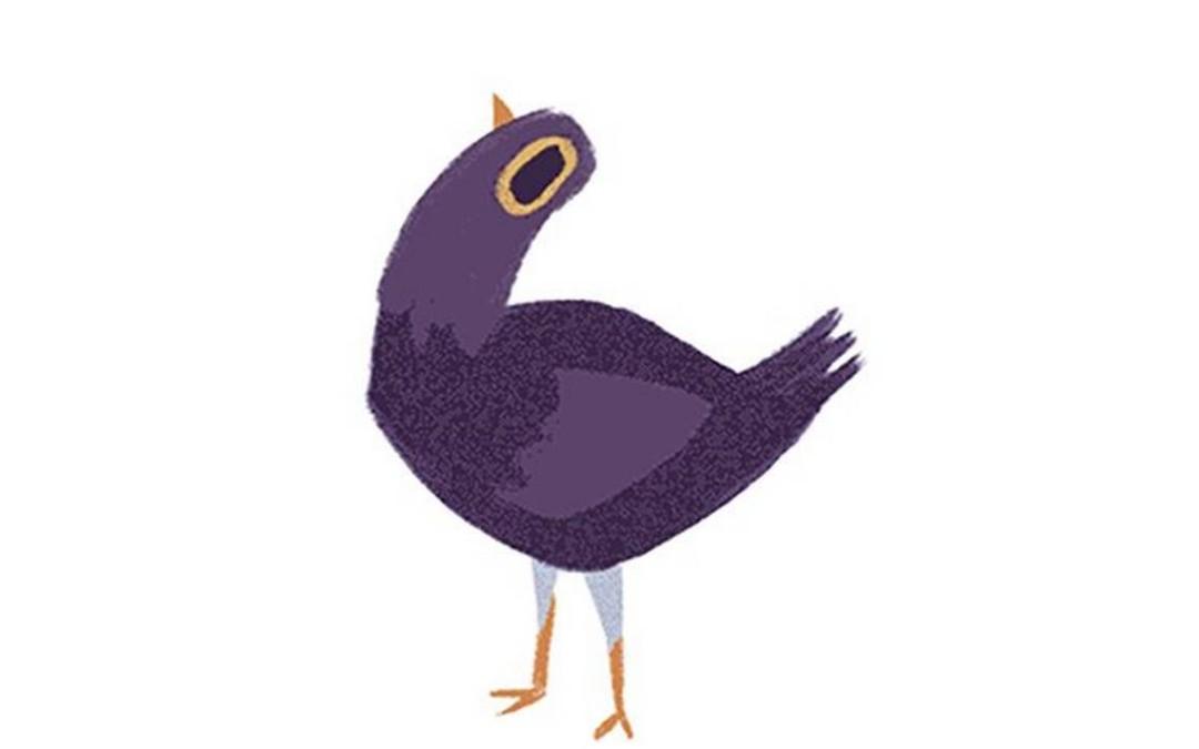 ¿De dónde salió Trash Dove, la paloma morada?